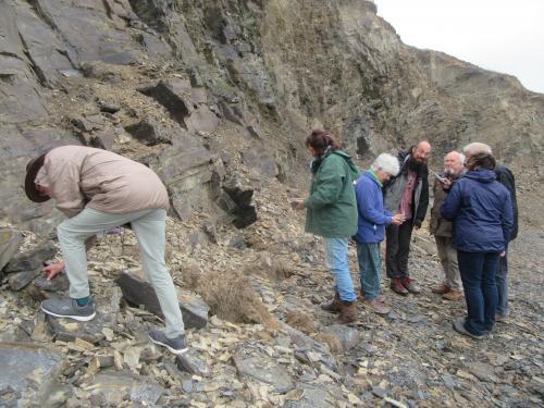 pales geology 003